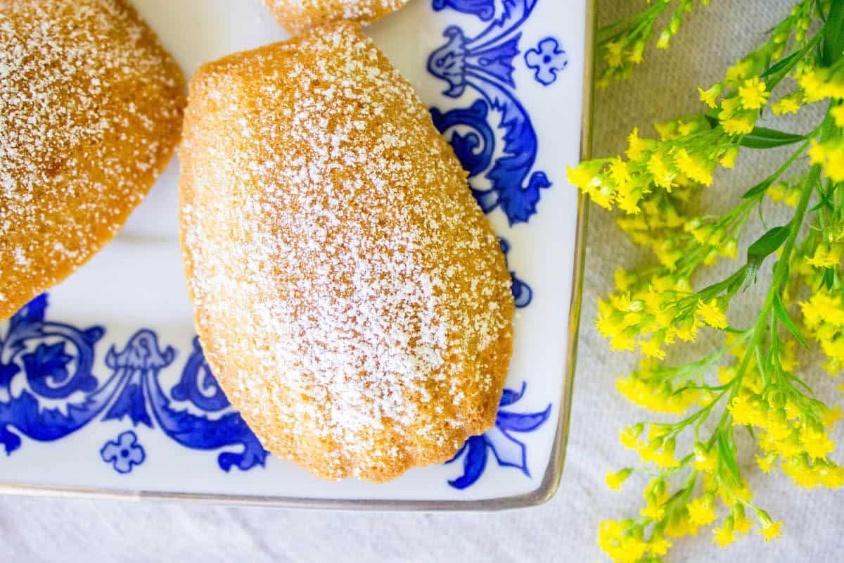 overhead shot of madeleine cake shell shape