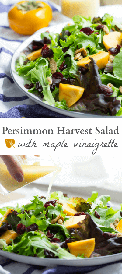 Persimmon Harvest Salad with Maple Vinaigrette - Mon Petit ...