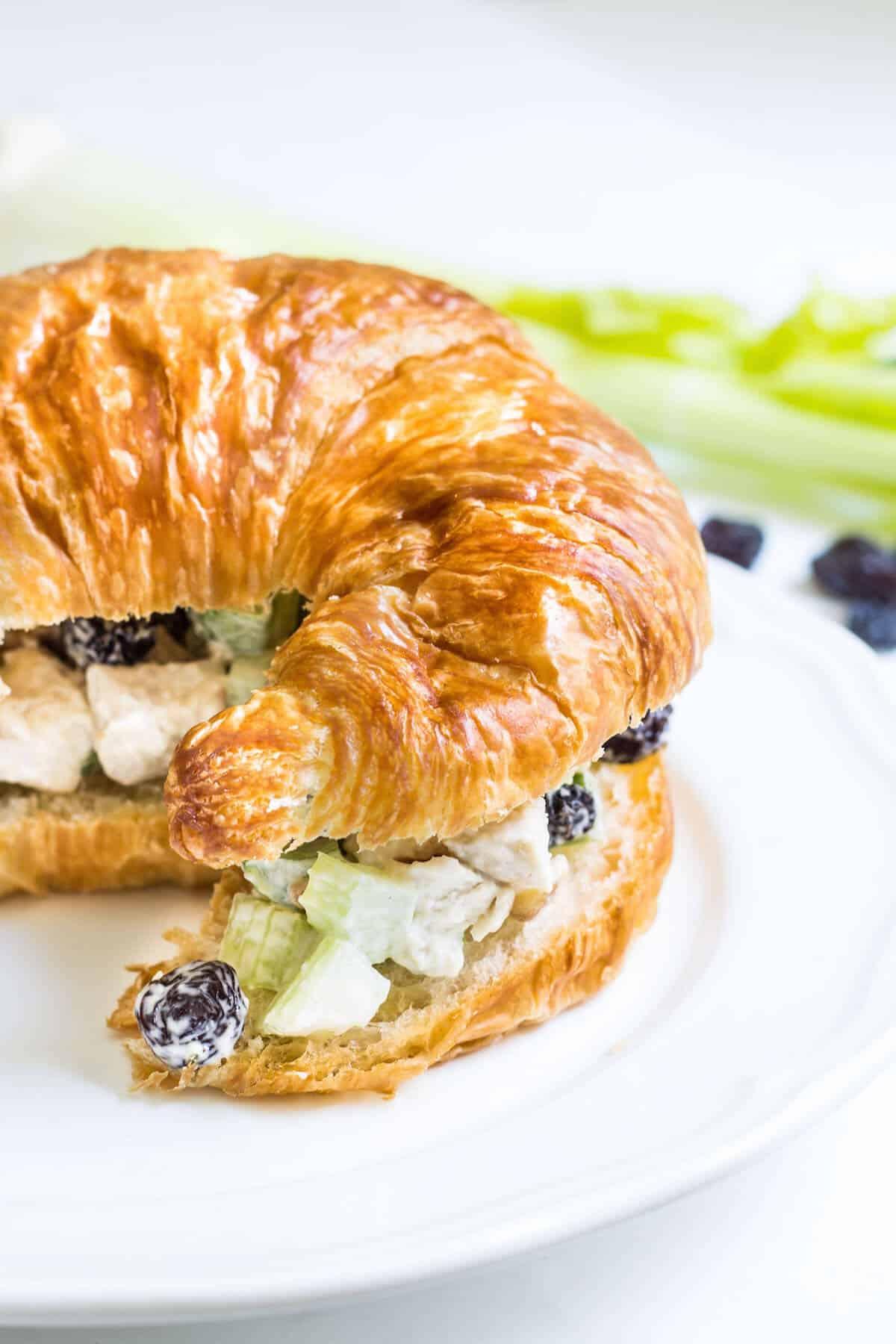 french chicken salad sandwich