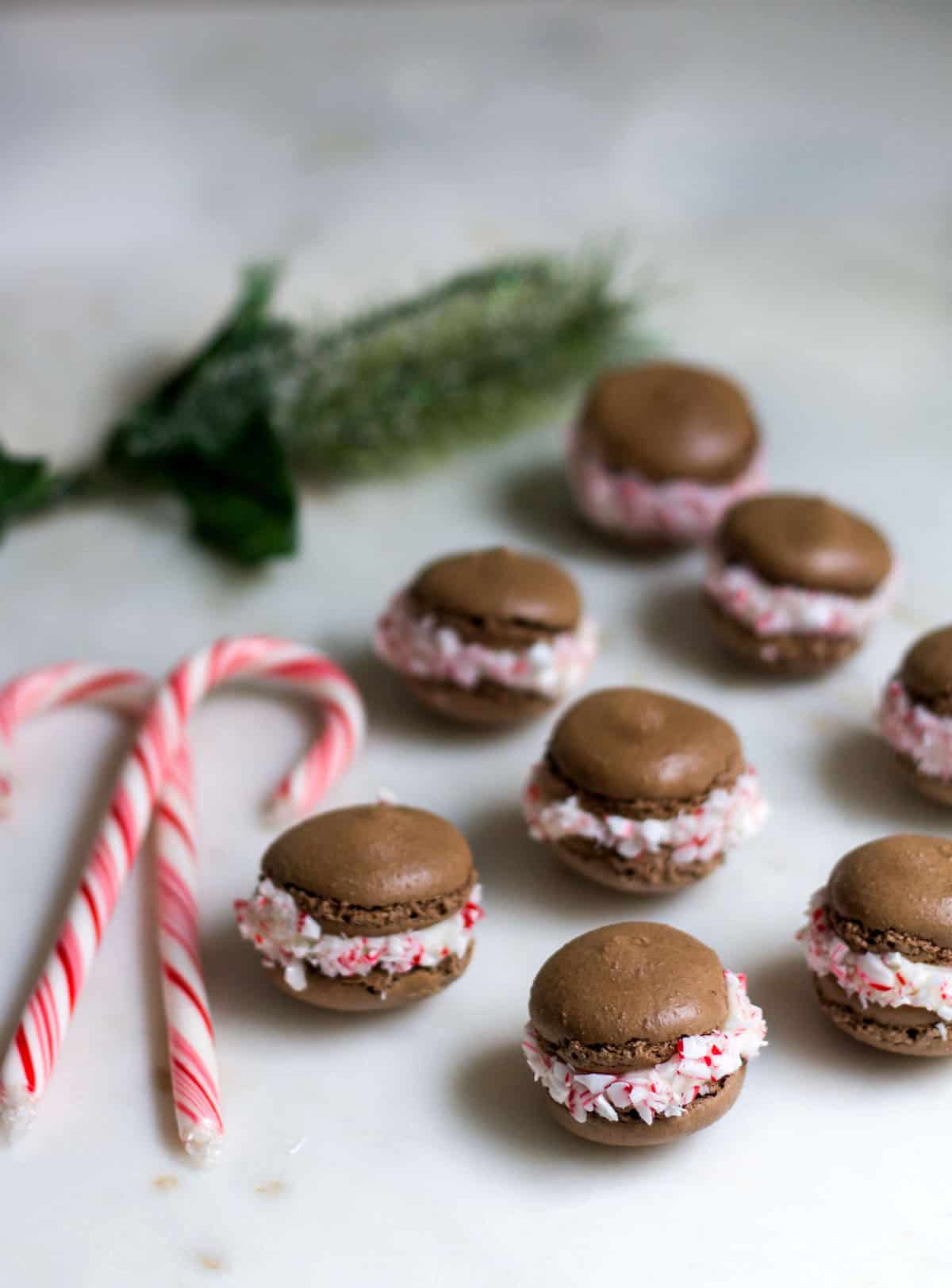 Chocolate Peppermint Macarons: a delicious combination of chocolate and candy cane peppermint! Perfect as a holiday gift or dessert. Recipe via MonPetitFour.com