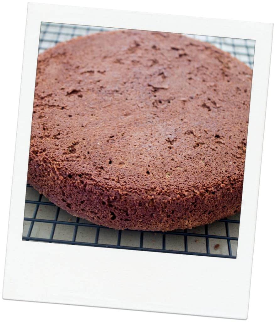 Julia Child Chocolate Cake Almond Recipe