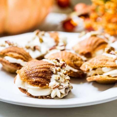Donsuemor pumpkin spice madeleines