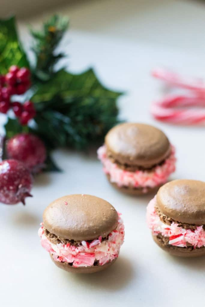 chocolate macarons next to holly berry